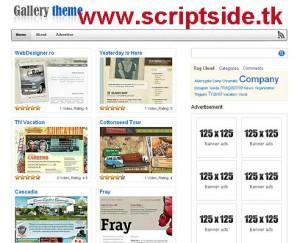 WordPress Profesyonel Video Teması Görseli