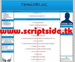TermiSBloG v1.0 Blog Scripti Demo