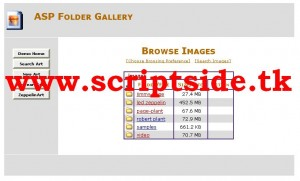 ASP Folder Gallery Resim Galerisi Scripti Demo