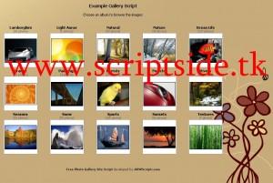 ArwScripts Resim Galerisi Scripti Demo