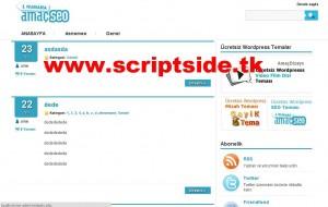 AmaçSeo WordPress Teması Demo