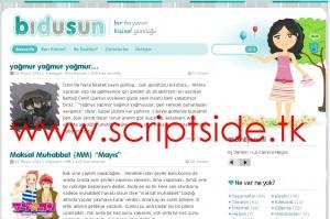 BiDüşün v1.0 WordPress Teması Demo