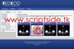 Redkod v2.0 Firma-Şirket Scripti Demo