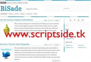 BiSade WordPress Teması Görseli