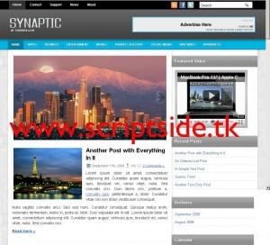 Synaptic WordPress Teması Görseli