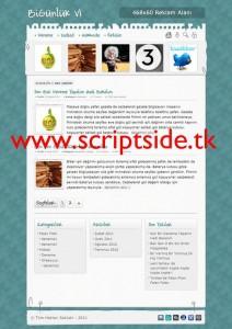BiGünlük v1.0 Kişisel WordPress Teması Demo