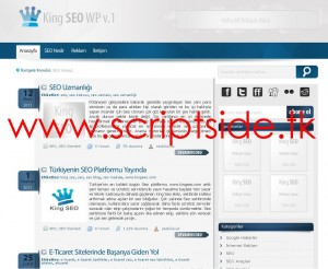 KingSEO v1.0 WordPress Blog Teması Görseli