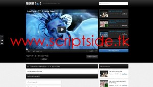SoundsGood WordPress Video Teması Görseli