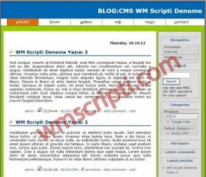 BLOG:CMS v4.2.1 Blog Scripti Görseli