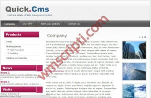 Quick CMS v4.2 İçerik Yönetim Scripti Görseli