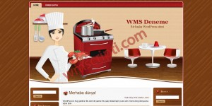 WordPress Yemek Tarifi Teması Demo