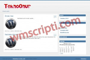 TeknoOnur T1 v2.5 WordPress Teması Görseli