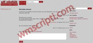 ulisözlük WordPress Sözlük Teması Demo