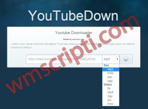 YouTubeDown Youtube İndirme Scripti Demo