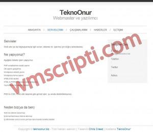 TeknoOnur TBiz v1.5 Firma Scripti Demo