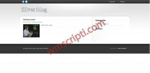 PHP Silver Blog Scripti Demo