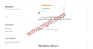 Maian Ads v1.1 Kelime Reklam Scripti Demo