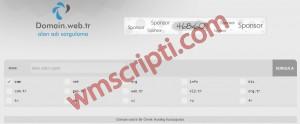 Basit Domain Sorgulama Scripti Demo